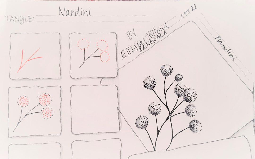 Nuevo tangle; Nandini